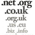 доменные споры в 2010-м году